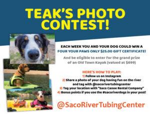 saco river dogs photo contest
